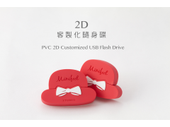2D客製化隨身碟(PVC 2D Customized USB Flash Drive)