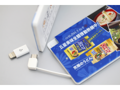 SPB09 名片型行動電源(Business Card Style External Battery Power Bank)2500mAh